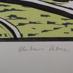 Colin Moore Blenheim 6