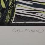 Colin Moore Blenheim 7
