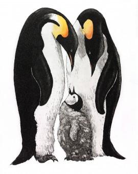 Jane Peart First Tweet etching Wychwood Art