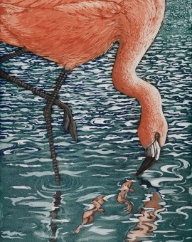 Jane Peart Flamenco Flamingo etching Wychwood Art