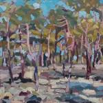 Cedars at Dusk 26cm x 31cmjpg Diane Hadden