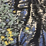 Marsh Marigold, Alexandra Buckle, Limited Edition Linocut Print, Landscape Art, Close Up 2