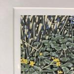 Marsh Marigold, Alexandra Buckle, Limited Edition Linocut Print, Landscape Art, Close Up 8