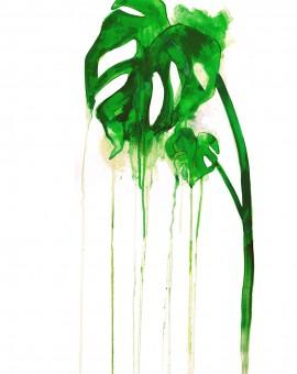 Gavin Dobson | Cheese Plant | Wychwood Art