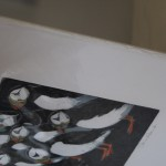 Jane Peart, Breaking Ranks, Animal Art, Bird Art, Puffin Art
