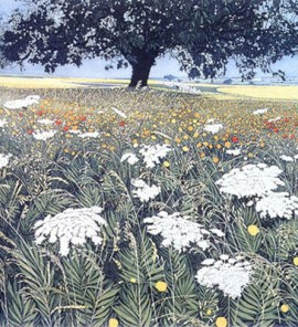 Phil-Greenwood-Spanish-Fields-Wychwood-Art