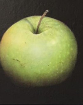 Dani-Humberstone-Very-green-apple-wychwood-art-interior