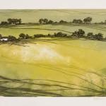 Laura Boswell-Croft and three fields-Wychwood Art