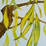 Laura Boswell-Doves_in_the_Willow-det1-Wychwood Art