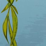Laura Boswell-Doves_in_the_Willow-det2-Wychwood Art