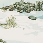 Laura Boswell-Dry stone wall-det2-Wychwood Art