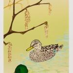 Laura Boswell-Mallard Ducks with Hazel Catkins-Wychwood Art