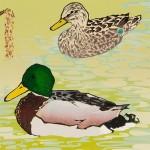 Laura-Boswell-Mallard-Ducks-with-Hazel-Catkins-det1-Wychwood-Art