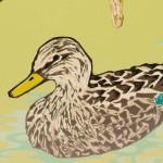 Laura-Boswell-Mallard-Ducks-with-Hazel-Catkins-det3-Wychwood-Art