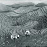 CH Longji Rice Terraces, Guangxi Province