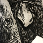 Jane Peart, Family Gathering, Elephant Art, Family Art, Etching 9