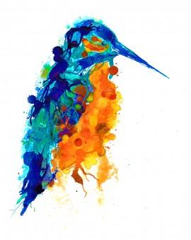 Kingfisher50x70samp