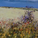 Michael Sanders, Summer Hedgerows, Limited Edition Print, Canvas Print, Landscape Art, Affordable Art 4