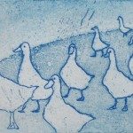 Geese-Tim-Southall-blue-print
