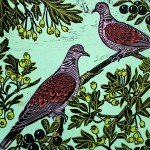 Kateheiss_TwoTurtleDoves_birds_nature_landscape_hawthorn_print_WychwoodArt