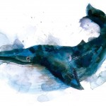 gavin dobsons – Whale – Limited edition print