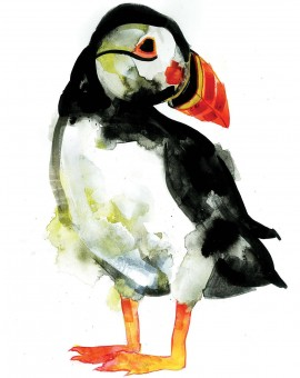 gavin dobson | puffin | bird screen print | animal art | cute art