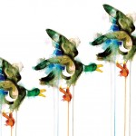 GAvin Dobson | Three flying ducks| ANimal art