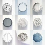Katie Hallam | Nests | Photograph