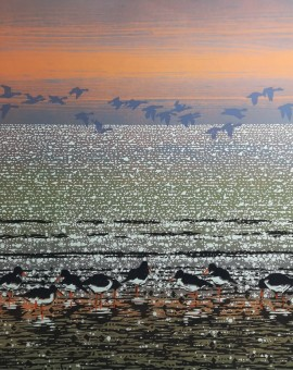 oyster catchers mark pearce