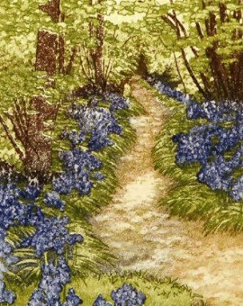 jan dingle still path woodland etching