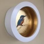 kingfisher sally ann johns 1