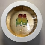 love birds sally ann johns framed