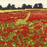 Jan Dingle | Red Field | Landscape