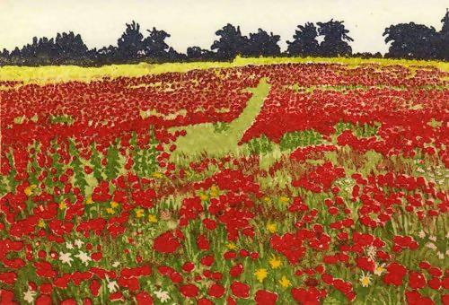 Jan Dingle | Red Field | Landscape