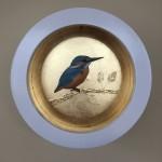 sally ann johns kingfisher1