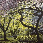 Alexandra Buckle - Batsford Blossom in Shade - tree spring woodland linocut print