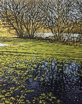Alexandra Buckle -Lakeside Puddles -water reflections lake linocut print