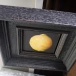 Dani Humberstone, Lemon, Original Oil Painting for Sale 4