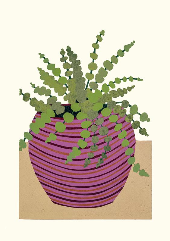 Kerry Day, Sedum Rubrotinctum lino print. Green leafed Sedum Rubrotinctum plant in a purple,stripey plant pot on a beige and white background.