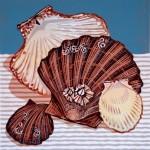 Scallop Shells Mark