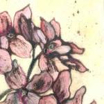 Vicky-Oldfield-Honesty-bloom-Wychwood-Art copy 2