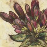 Vicky Oldfield, Spider flower bud, Wychwood Art