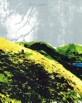 katie edwards art for sale online. mountain bike silkscreen print