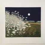 moonlights sheet