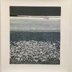 silver tide sheet
