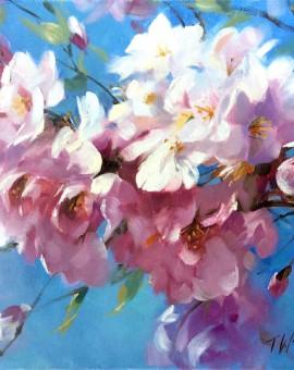 trevor_waugh_cherry_blossom