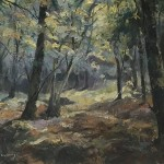 Trevor Waugh, Forest Tapestry, Original Oil Painting for Sale Online. Nature art, tree art, paintings of woods, paintings of forests, gifts for nature lovers. Full