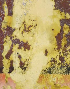 Takkiya - Gina Parr - Wychwood Art 72 dpi