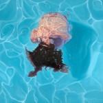 AmyDevlin,Metamorphia,Underwater Art for Sale 1500w_1