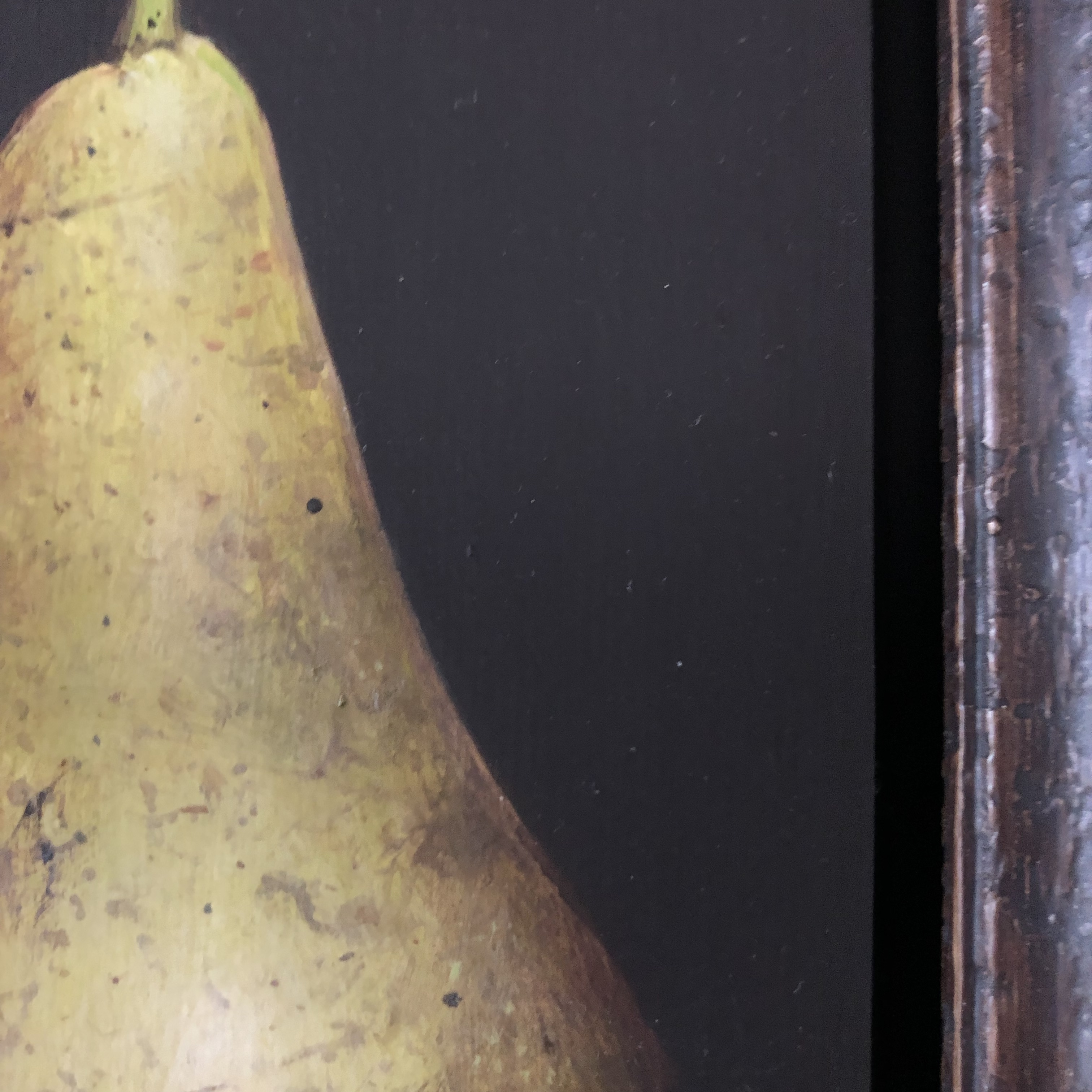 Conference Pear is an original oil painting by Dani Humberstone. The layered black frame and background enhances the colours and textures of the pear.